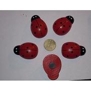 Buburuze Uriase cu Magnet set 100buc